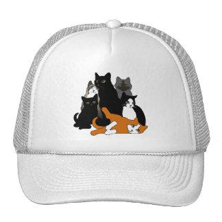 Ennegrezca los gatos anaranjados grises blancos de gorras