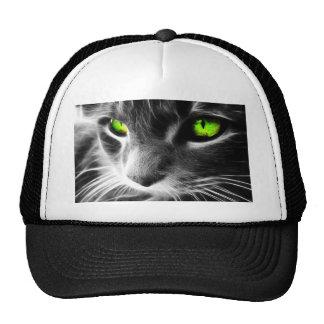 Ennegrezca y blanquee la cara del gato con los ojo gorro