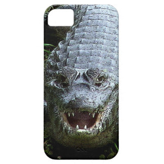 Enormous Crocodile iPhone 5 Case