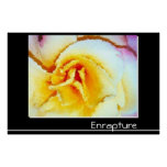 Enrapture Posters