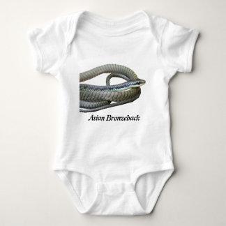 Enredadera asiática del niño de Bronzeback Body Para Bebé