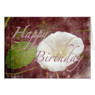 Enredadera del cumpleaños - correhuela perenne sal felicitación