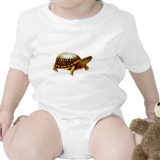 Enredadera del este del niño de la tortuga de caja camisetas