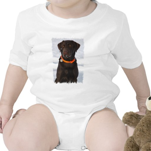 Enredadera del niño de Labrador del chocolate Camiseta