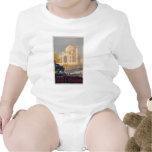 Enredadera del niño del Taj Mahal Camiseta