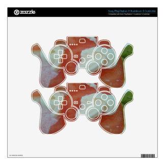 Ensalada sana de la primavera mando PS3 skins