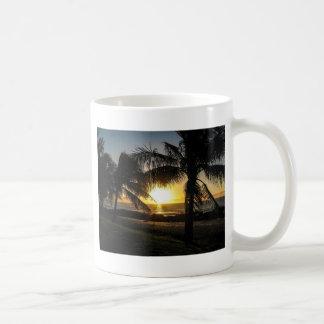 Ensenada de los tiburones de la puesta del sol de  tazas de café