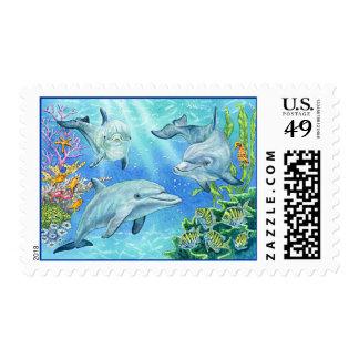 Ensenada del delfín sellos