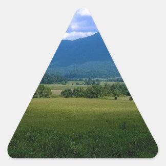 Ensenada pacífica de Cades Pegatina Triangular