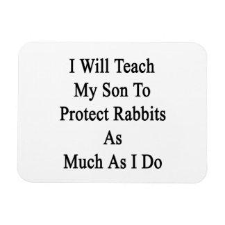 Enseñaré a mi hijo a proteger conejos tanto como imanes de vinilo