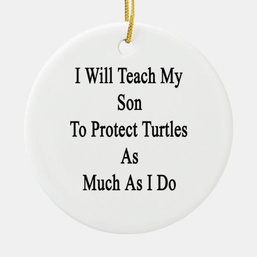 Enseñaré a mi hijo a proteger tortugas tanto como ornamentos para reyes magos