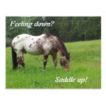 Ensille para arriba la postal del caballo