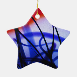Entangled Grass Double-Sided Star Ceramic Christmas Ornament