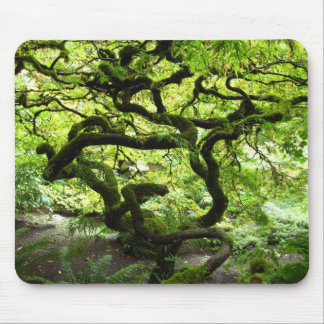 Entangled Mouse Pad