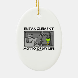 Entanglement Motto Of My Life (Quantum Physics) Double-Sided Oval Ceramic Christmas Ornament