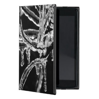 enter icy winter iPad mini covers