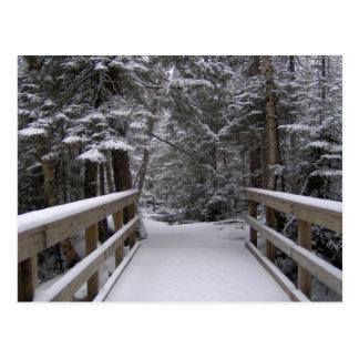 Enter - New Hampshire Snow Scene Postcard