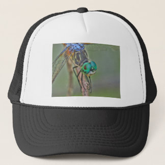 Enter the Dragon....fly Trucker Hat