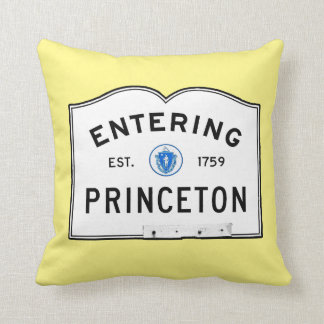 Entering Princeton Throw Pillow