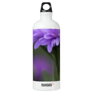 Enticement Aluminum Water Bottle