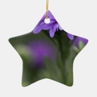 Enticement Ceramic Ornament