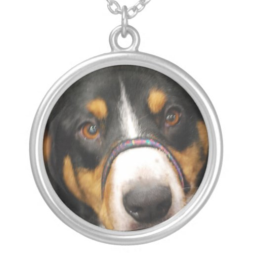 entlebucher-mountain-dog-3.jpg pendant