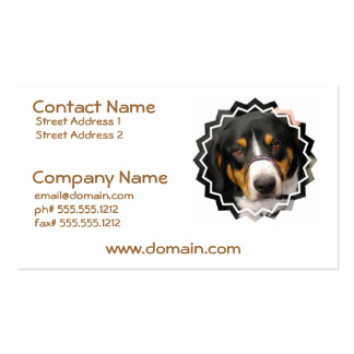Entlebucher Mountain Dog Business Cards