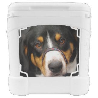 Entlebucher Mountain Dog Igloo Roller Cooler