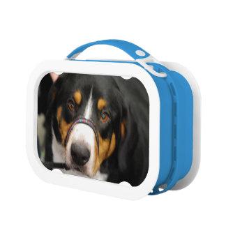 Entlebucher Mountain Dog Yubo Lunchbox
