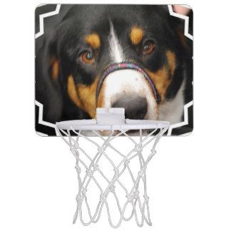 Entlebucher Mountain Dog Mini Basketball Hoop