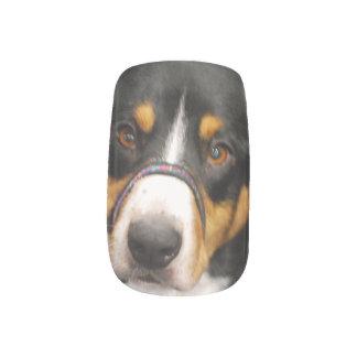 Entlebucher Mountain Dog Minx® Nail Wraps