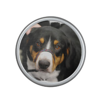 Entlebucher Mountain Dog Speaker