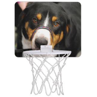 Entlebucher Mountain Dog Mini Basketball Hoops