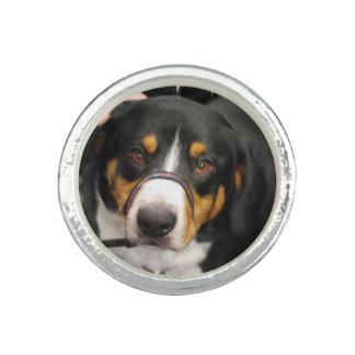 Entlebucher Mountain Dog Photo Ring