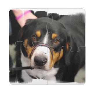Entlebucher Mountain Dog Puzzle Coaster