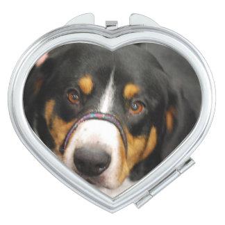 Entlebucher Mountain Dog Vanity Mirrors