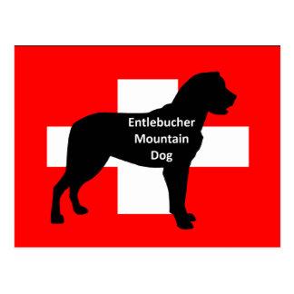 entlebucher mt dog name silo on switzerland flag.p postcard
