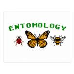 entomología de 8 bits postal