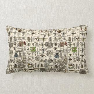 Entomología del vintage almohada