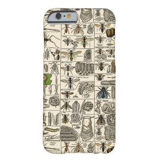 Entomología del vintage funda para iPhone 6 barely there