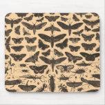Entomología Mousepad del vintage Tapetes De Ratones