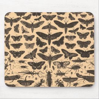Entomología Mousepad del vintage
