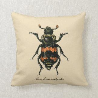 Entomología Revers. del escarabajo del sacristán Cojín