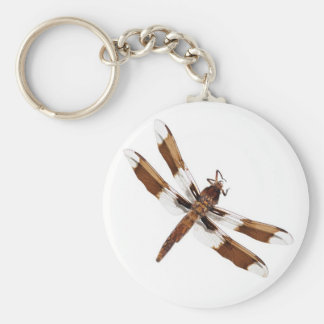 Entomologist Entomology Key Chain