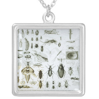 Entomology Insects Square Pendant Necklace