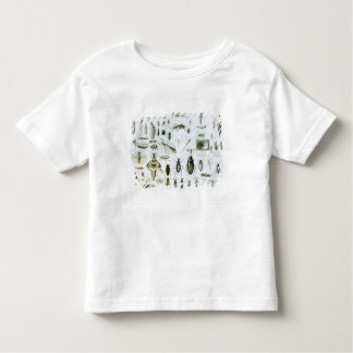 Entomology Insects Toddler T-shirt