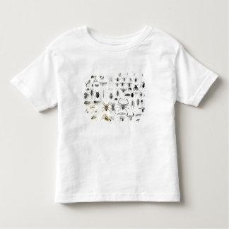 Entomology, Myriapoda and Arachnida Toddler T-shirt