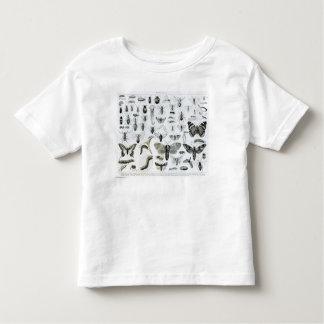 Entomology Toddler T-shirt