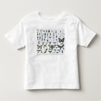 Entomology Toddler T-shirt
