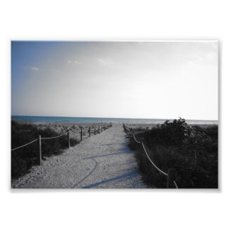 Entrada a la playa cojinete